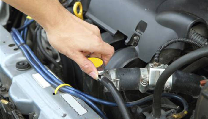 Gulf Coast European Automotive Advice on Your Cooling System